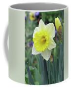 Dallas Daffodils 64 Coffee Mug