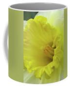 Dallas Daffodils 73 Coffee Mug