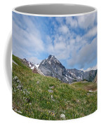 Dallas Peak Coffee Mug