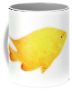 Damselfish Coffee Mug