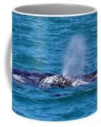 Dana Point 3 Coffee Mug