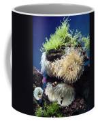 Dance Of The Anemones Coffee Mug