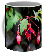 Dancing Fuchsia Coffee Mug
