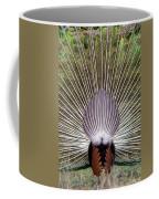 Dancing Peacock, Kanha National Park Coffee Mug