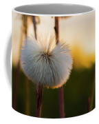 Dandelion At Sunset Coffee Mug