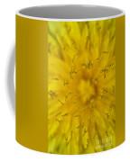 Dandelion Flower Macro Coffee Mug