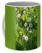 Dandelions On The Maryland Appalachian Trail Coffee Mug