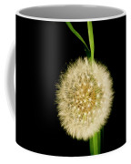 Dandelion's Seed Head. Coffee Mug