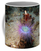 Dangerous Underwater Flower Coffee Mug