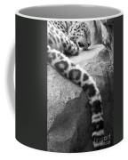 Dangling And Dozing In Black And White Coffee Mug