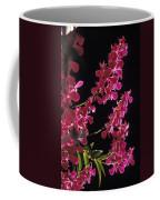 Danrobium Orchids Used To Make Lais Coffee Mug