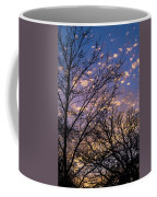 Dappled Sunset-1547 Coffee Mug