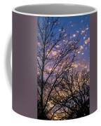 Dappled Sunset-1547 Coffee Mug
