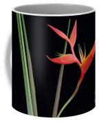 Daring Heliconia Acuminata Coffee Mug