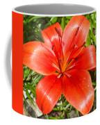 Dark Orange Red Lily II Coffee Mug