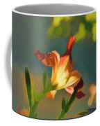 Dark Red Day Lily With Sun Shining Through I Abstract I Coffee Mug