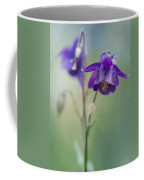 Dark Violet Columbine Flowers Coffee Mug
