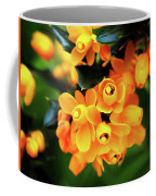Darwins Barberry -  Berberis-darwinii  Coffee Mug