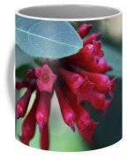 Day Blooming Jasime Coffee Mug