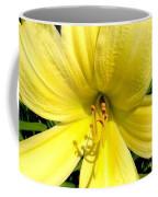 Day Daisy Coffee Mug