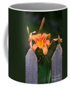 Day Lilly Fenced In Coffee Mug