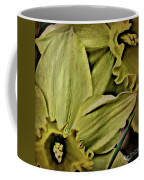Day Lily In Yellow Coffee Mug