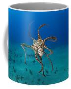 Day Octopus Coffee Mug