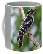 Daydreaming Downy Woodpecker Coffee Mug