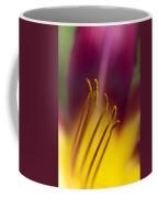 Daylily Abstract Coffee Mug