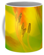 Daylily In Morning Light Coffee Mug