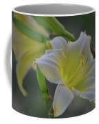 Daylily In Yard Coffee Mug