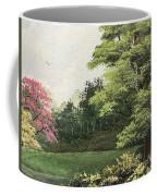 Daytime Color Coffee Mug