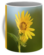 Ddp Djd Sunflower 2639 Coffee Mug