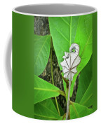 Dead Leaf Live Leaf Coffee Mug