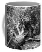 Deadwood Coffee Mug