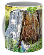 Deadwood On Cherry Creek Trail 3 Coffee Mug