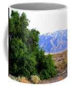 Death Valley 2 Coffee Mug
