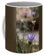Death Valley Lavenders Coffee Mug