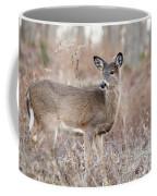 December Doe Coffee Mug