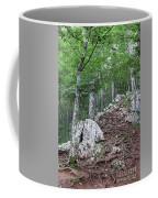 Deep Forest Rocky Path Nature Coffee Mug
