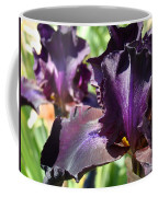 Deep Purple Irises Dark Purple Irises Summer Garden Art Prints Coffee Mug