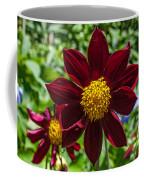 Deep Red And Yellow Flowers Coffee Mug