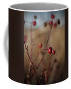 Deep Red Rose Hips On Brown And Blue Coffee Mug