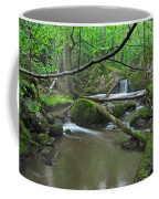 Deep Woods Stream 2 Coffee Mug