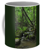 Deep Woods Stream 3 Coffee Mug