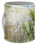 Deer 005 Coffee Mug