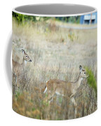 Deer 006 Coffee Mug