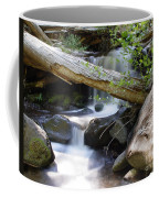 Deer Creek 03 Coffee Mug