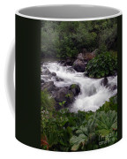 Deer Creek 07 Coffee Mug