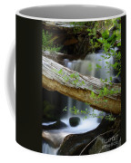 Deer Creek 13 Coffee Mug
